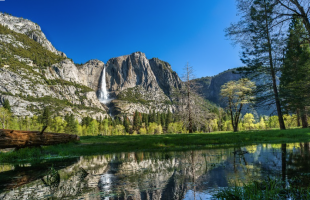 California Dreaming RV Tour (Sequoia, Yosemite)
