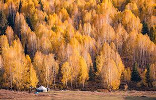 西域南、北疆15天全景之旅