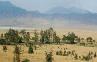 EAST AFRICA  13 DAY SAFARI TOUR